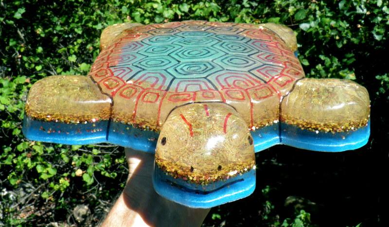 Turtle-8.24.15.jpg