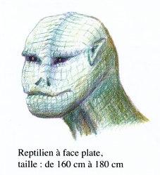 reptillien.a.face.plate.jpg